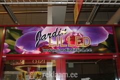 JARDIN LILLED
