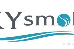 Sky smoke logo
